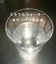 2010_07210025.jpg