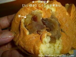 2010_10310027.jpg