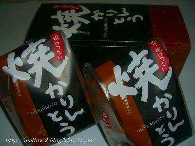 2011_03010036.jpg