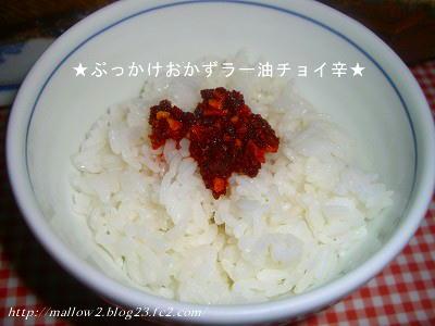 2011_03080004.jpg