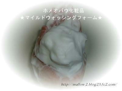2011_03190018.jpg