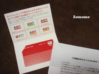 DSC05216_convert_20100328055331.jpg