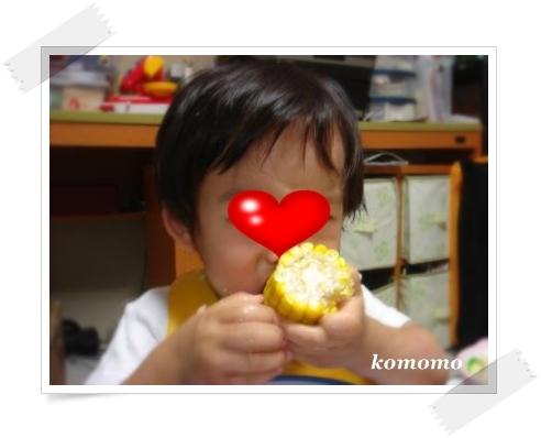 DSC06036_convert_20100703221401.jpg