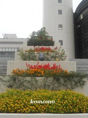 DSCN0517_convert_20101113211405.jpg