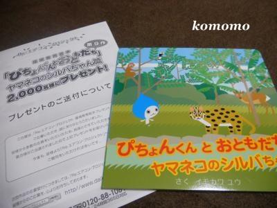DSCN0932_convert_20101225152733.jpg