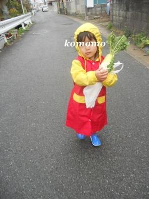 DSCN1981_convert_20110422222508.jpg