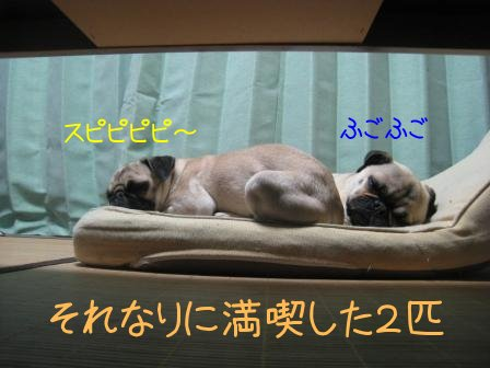10_20090929095020.jpg