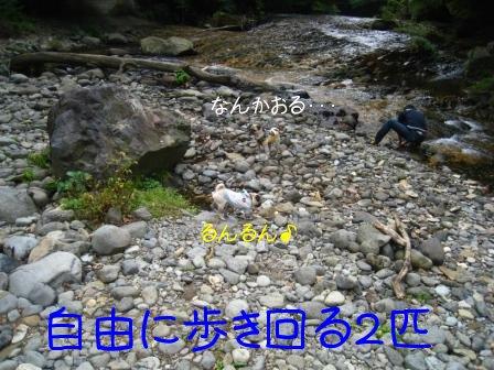 2_20090929095000.jpg