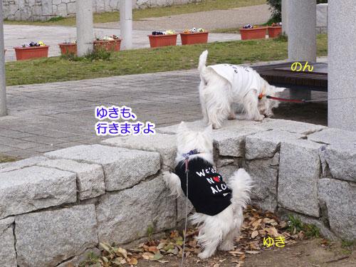 10_20110327222759.jpg