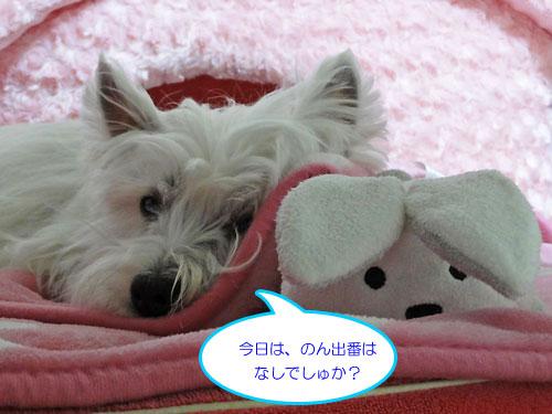 11_20110326210015.jpg