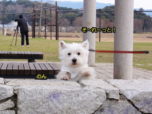 9_20110327222759.jpg