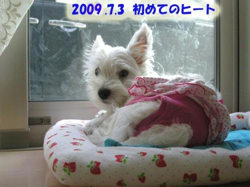 DSCN2050_20100207132505.jpg