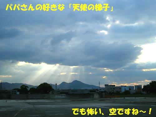DSCN55381.jpg