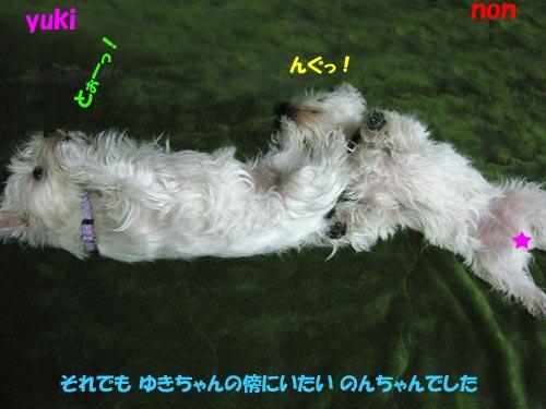 DSCN5796.jpg