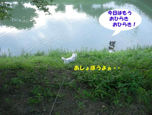 DSCN6145.jpg