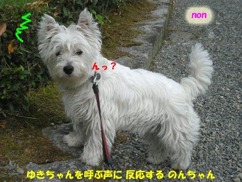 DSCN6172.jpg