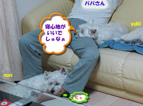 DSC_0004_20100808162208.jpg