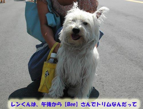 DSC_0009_20100725222134.jpg