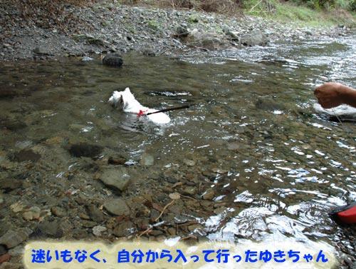 DSC_0011_20100830164209.jpg