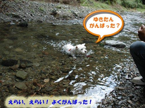 DSC_0015_20100830164207.jpg