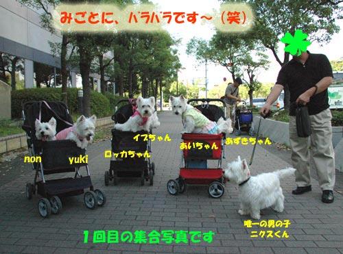 DSC_0018_20100919142035.jpg