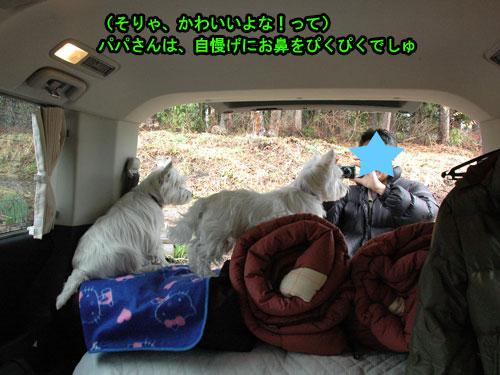DSC_0022_20110504192222.jpg