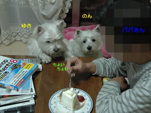 DSC_0023_20101226180637.jpg