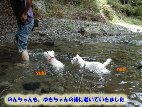 DSC_0025_20100830164207.jpg