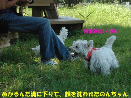 DSC_0030_20100725222156.jpg
