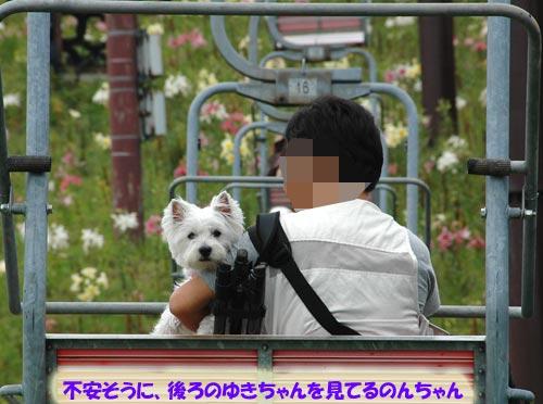 DSC_0031-s.jpg