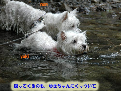 DSC_0040_20100830164615.jpg