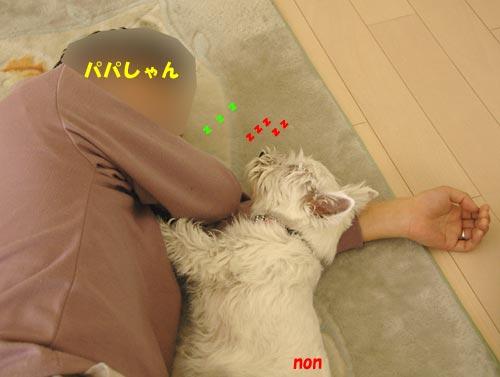 DSC_0050_20100503224952.jpg