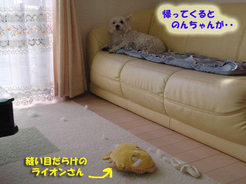 DSC_0059_20101018192052.jpg