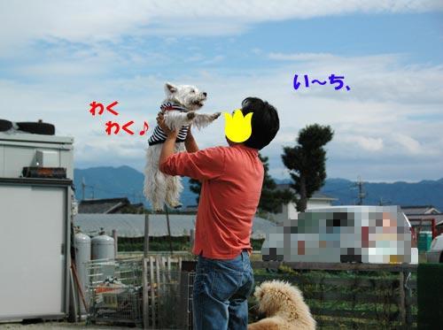 DSC_0060_20100929221820.jpg