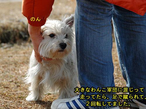 DSC_0066_20110210194432.jpg
