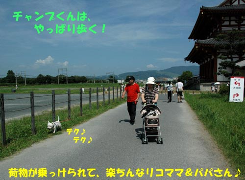 DSC_0106_20100726212248.jpg