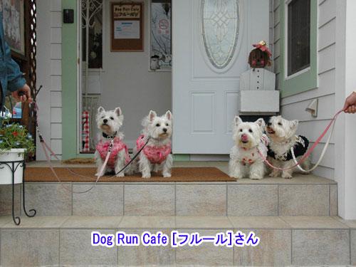 DSC_0111_20110507210002.jpg