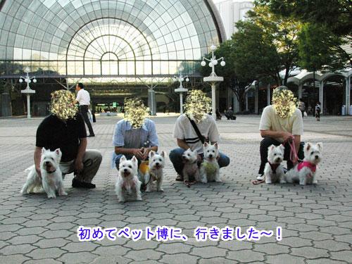 DSC_0116s.jpg