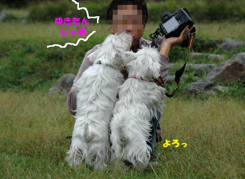 DSC_0147_20101025134053.jpg