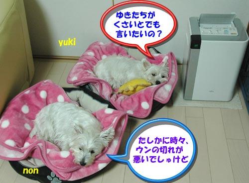 DSC_0220_20101004160158.jpg