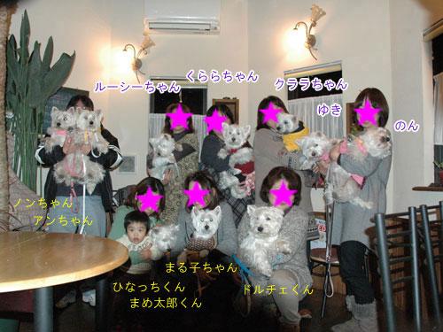 DSC_0282_20110117211840.jpg