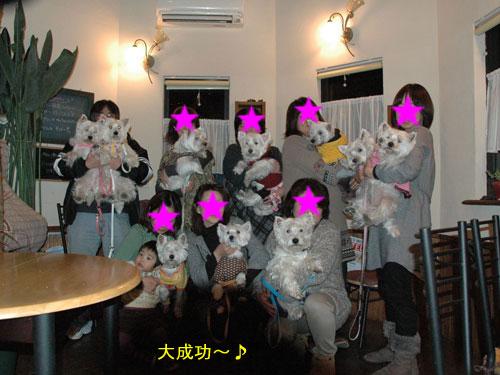 DSC_0284_20110117211840.jpg