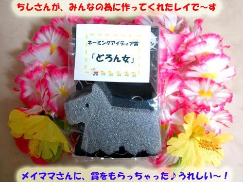 DSC_0332_20100804222901.jpg