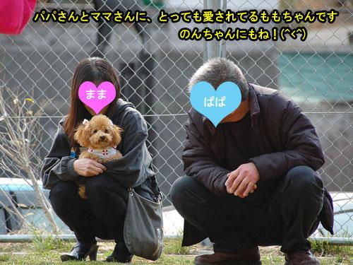 DSC_0397_20110407213217.jpg