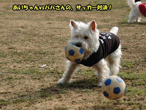 DSC_0447_20110403230620.jpg