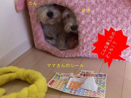 MAH00095(1).jpg