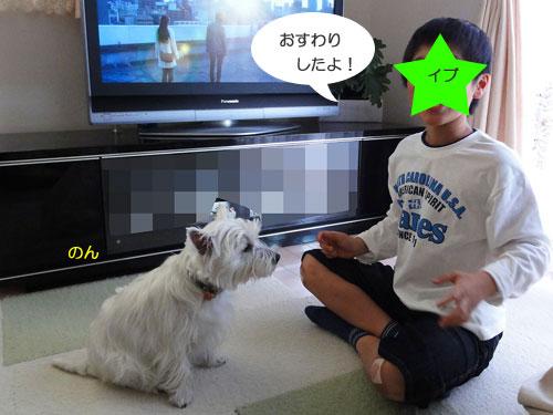 m2_20110329192018.jpg