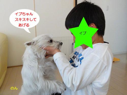 m4_20110329192018.jpg