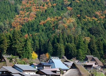 miyama7_20091117183450.jpg