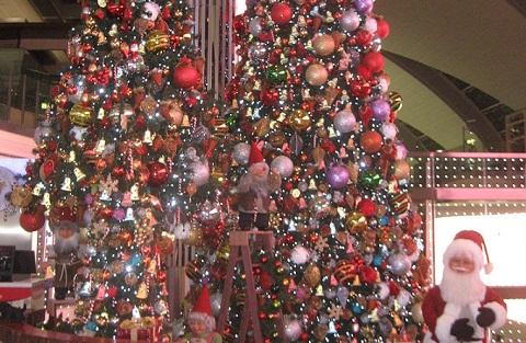 111208クリスマスツリー